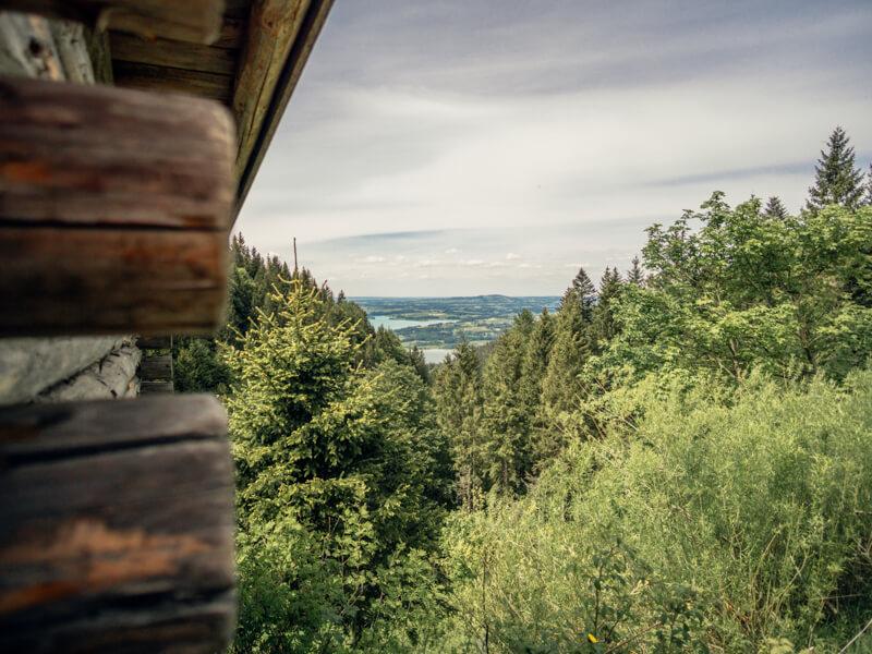 Ausblick von der Drehhütte zum Bannwaldsee