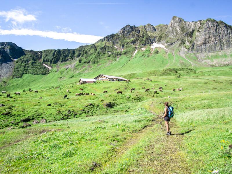 Wandern Kanisfluh