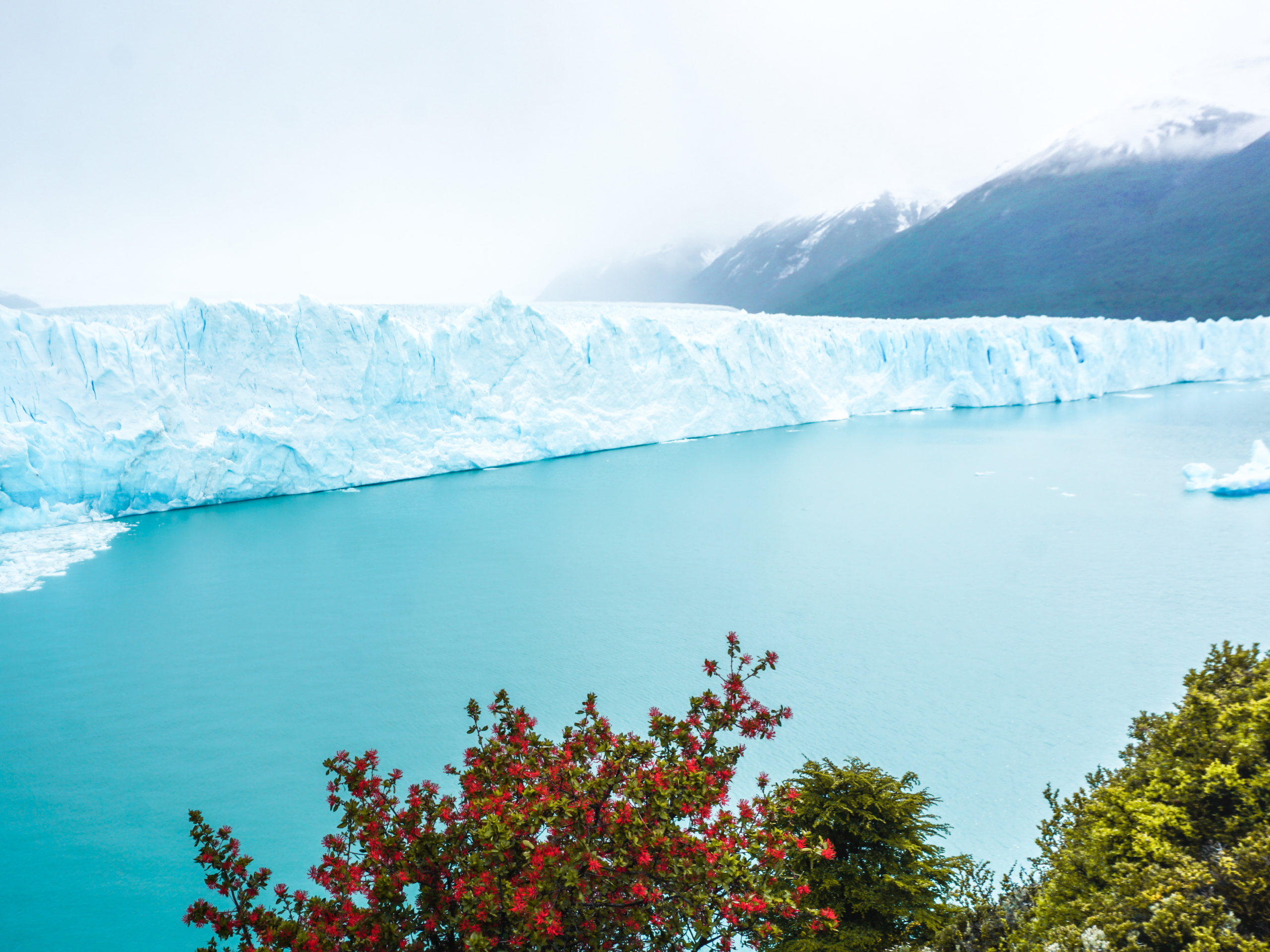 Perito Moreno Gletscher in Patagonien