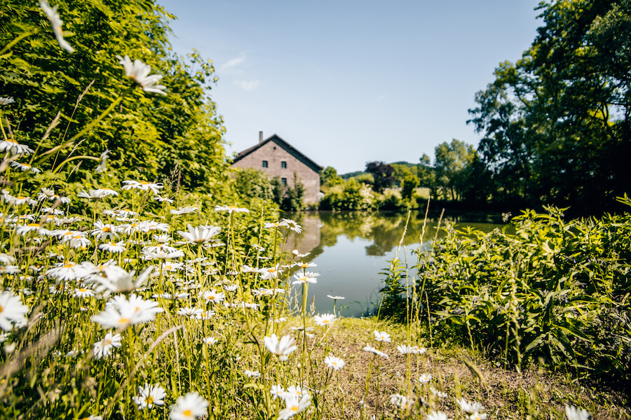 die große Anlage des Kloster Amelungsborn