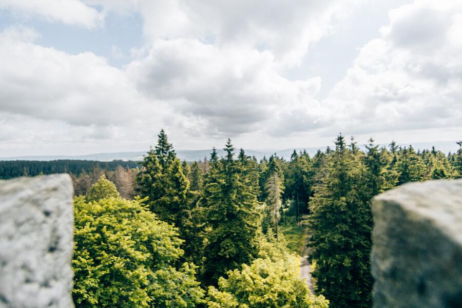 Ausblick vom Süntelturm